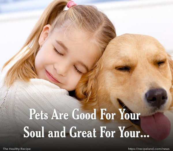 Pets Are Good For Your Soul and Great For Your Heart!