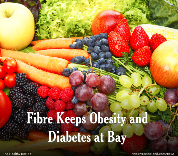 Fibre Keeps Obesity and Diabetes at Bay