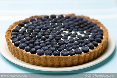 Blueberry Tart - Low Fat