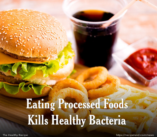 Eating Processed Foods Kills Healthy Bacteria