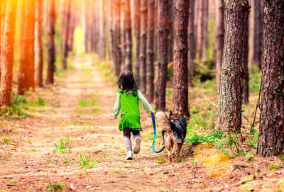 6 Ways to Improve Your Day By Taking a Walk