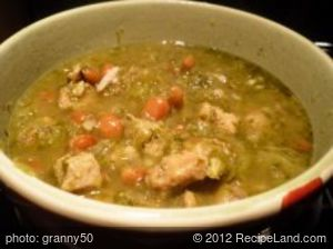 Tomatillo Pork Chili Verde Stew for Crock Pot or Slow Cooker