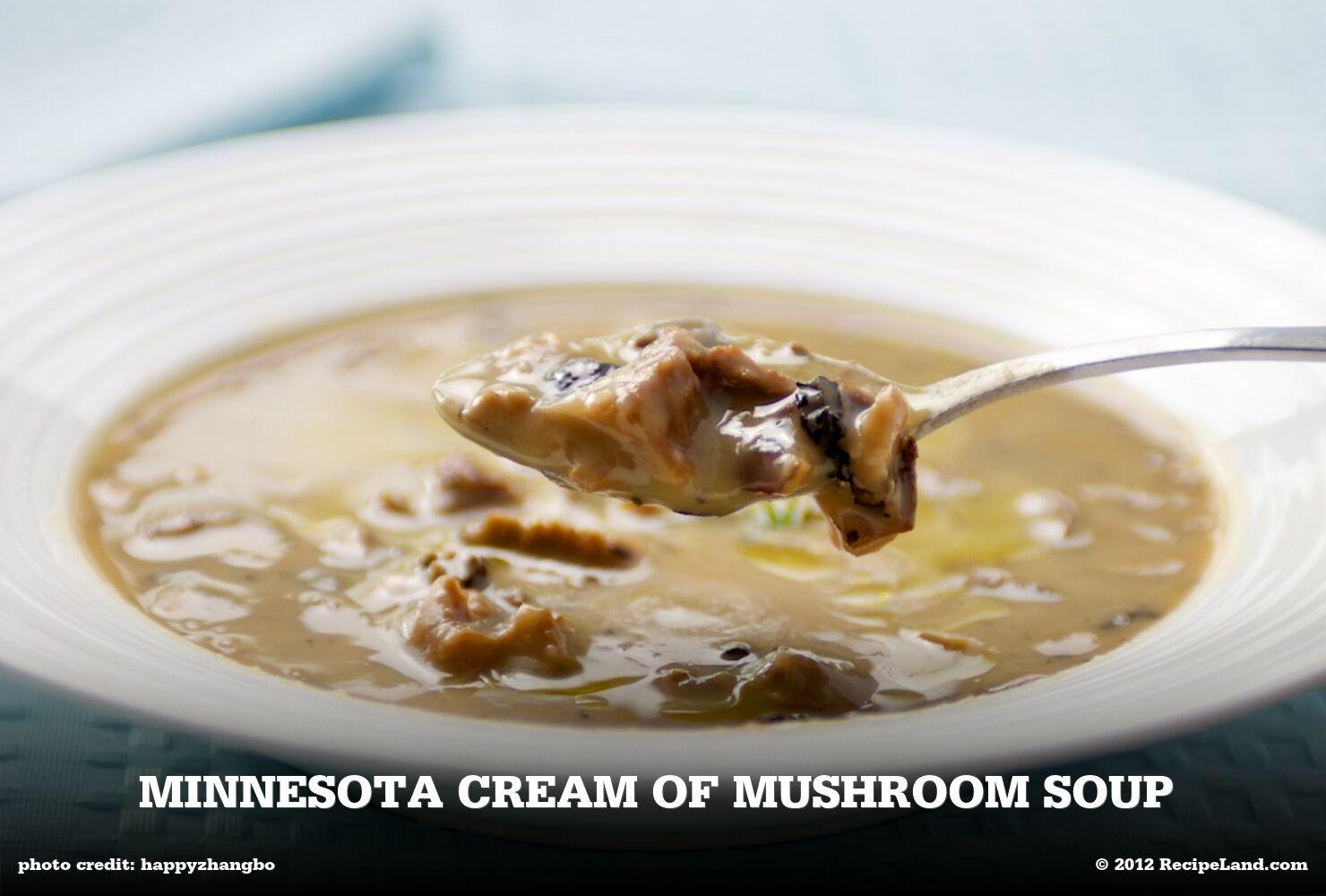 Minnesota Cream of Mushroom Soup