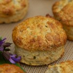 Sage Buttermilk Biscuits