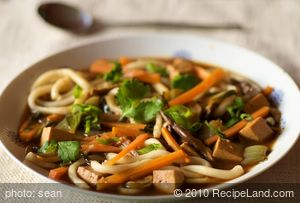 Asian Udon Noodle Soup