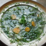 Kohlrabi Soup with Anise Flavor