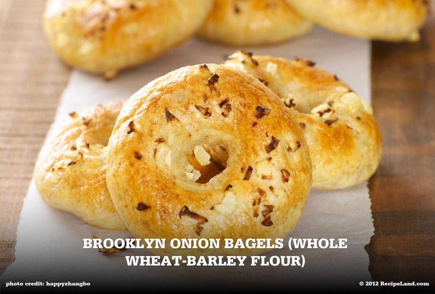 Brooklyn Onion Bagels (Whole Wheat-Barley Flour)