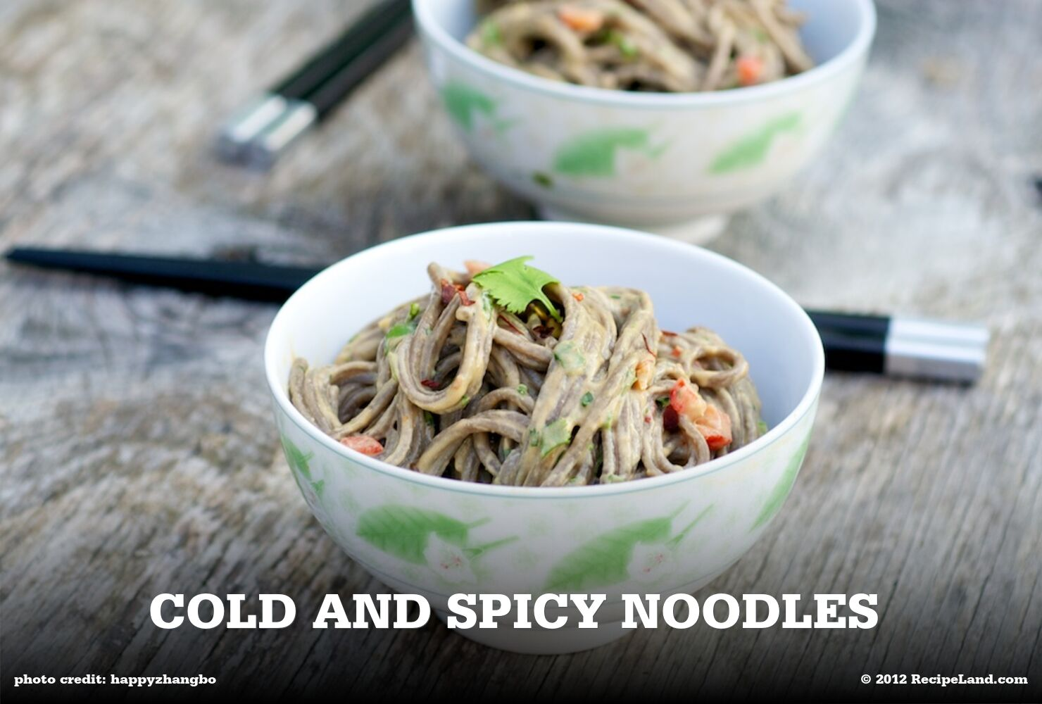 Cold and Spicy Noodles