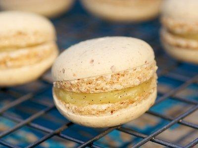 Vanilla Custard Macarons