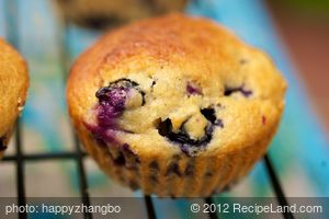 Moist Blueberry Coffee Cake Muffins