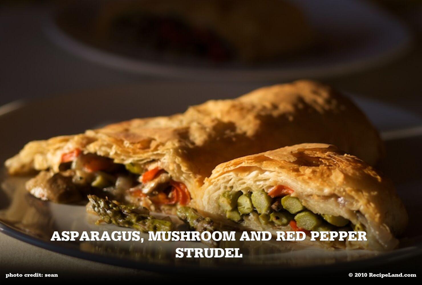 Asparagus, Mushroom and Red Pepper Strudel
