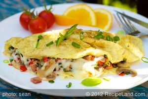 Low Fat Breakfast Omelet