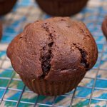 Double Chocolate Ricotta Muffins