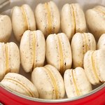 Vanilla Salted Caramel Macarons