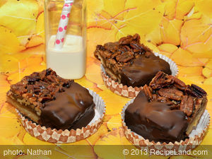 Pecan Pie Bars Dipped in Chocolate