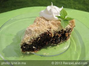 Shoofly Pie 2