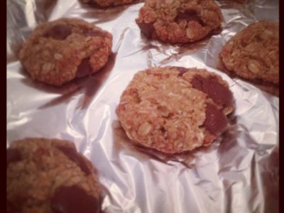 Chocolate Chip and Coconut Oatmeal Lactation Cookies