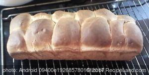 Brioche type Bread