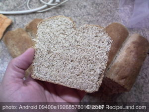 Bread for Toast