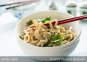 Cold and Spicy Udon Noodles