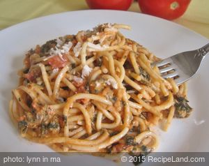 Pasta with Spinach and Tomato Cream Sauce