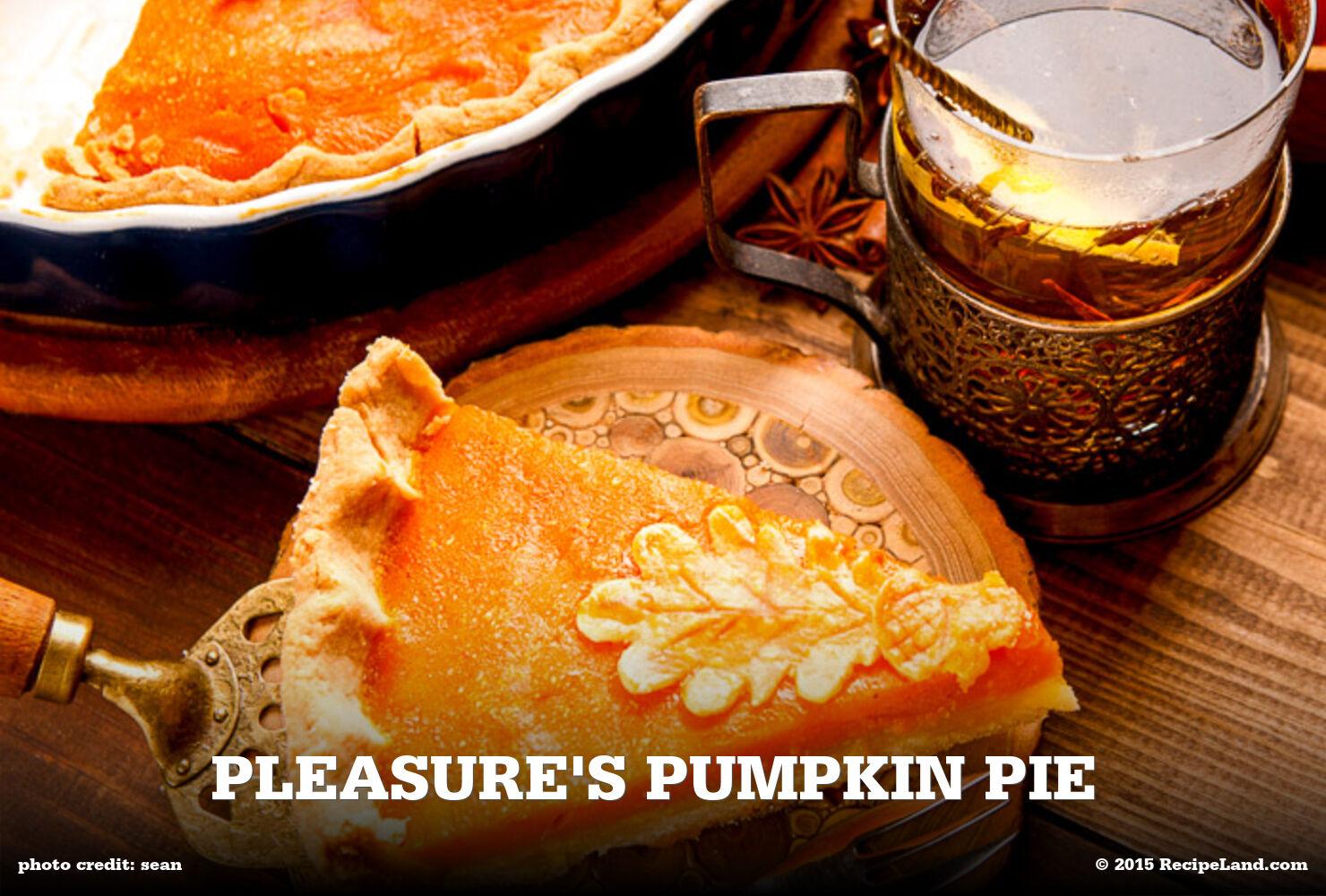 Pleasure's Pumpkin Pie