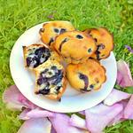Jordan's Blueberry Muffins