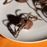 Halloween Chocolate Spiders