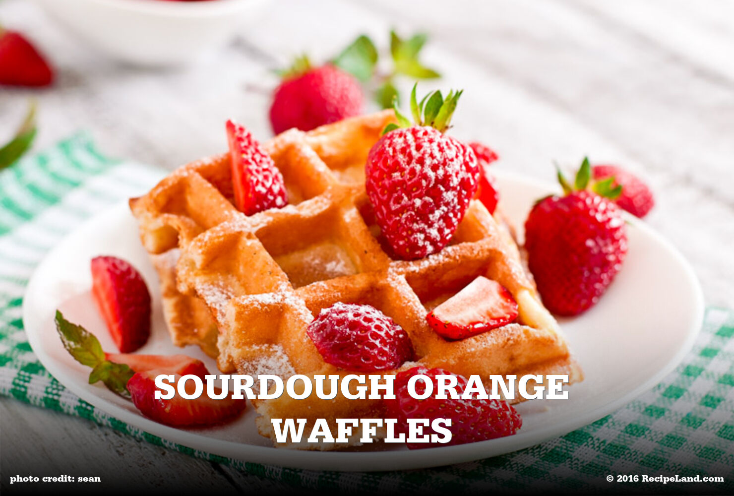 Sourdough Orange Waffles