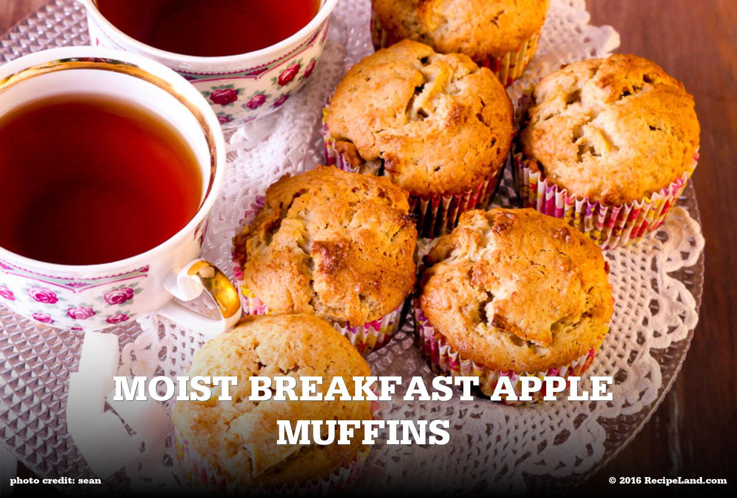 Moist Breakfast Apple Muffins