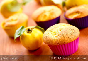 Apple Orange Spice Muffins (Ww)