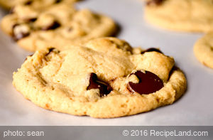 Whole Wheat Chocolate Chip Pudding Cookies