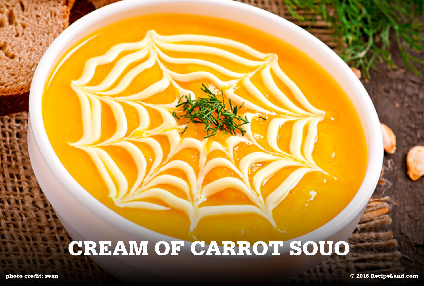 Cream of Carrot Souo