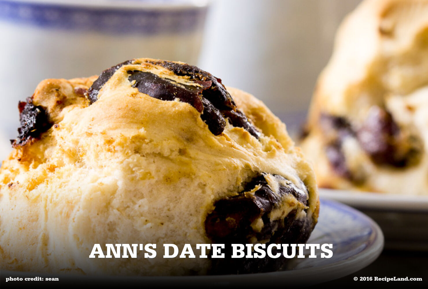 Ann's Date Biscuits