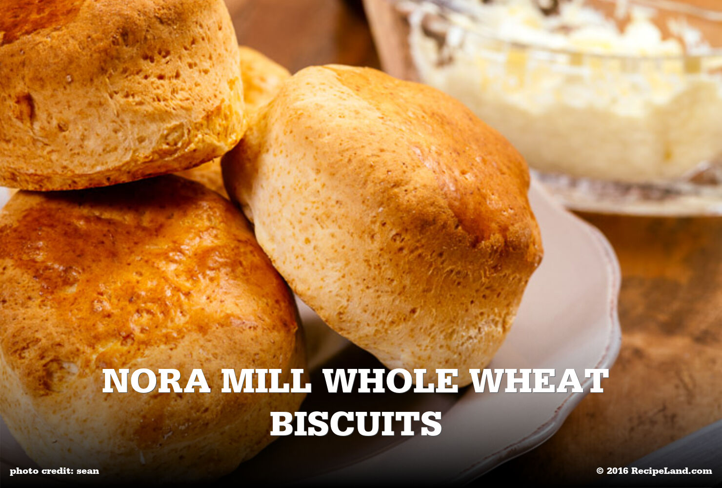 Nora Mill Whole Wheat Biscuits