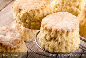 Cold Lunch Biscuits