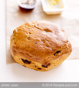 South Georgia Biscuits