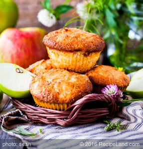 Quick Applesauce Muffins