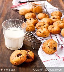 Best Pumpkin Chocolate Chip Cookies