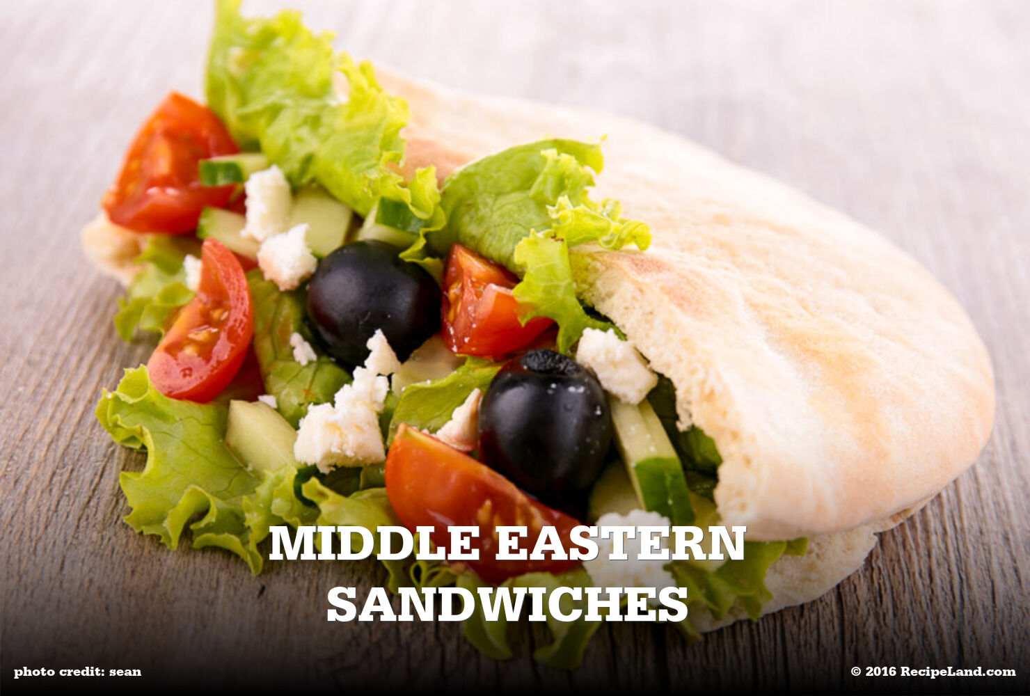 Middle Eastern Sandwiches