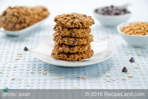 Best Pecan Chocolate Chip Oatmeal Cookies