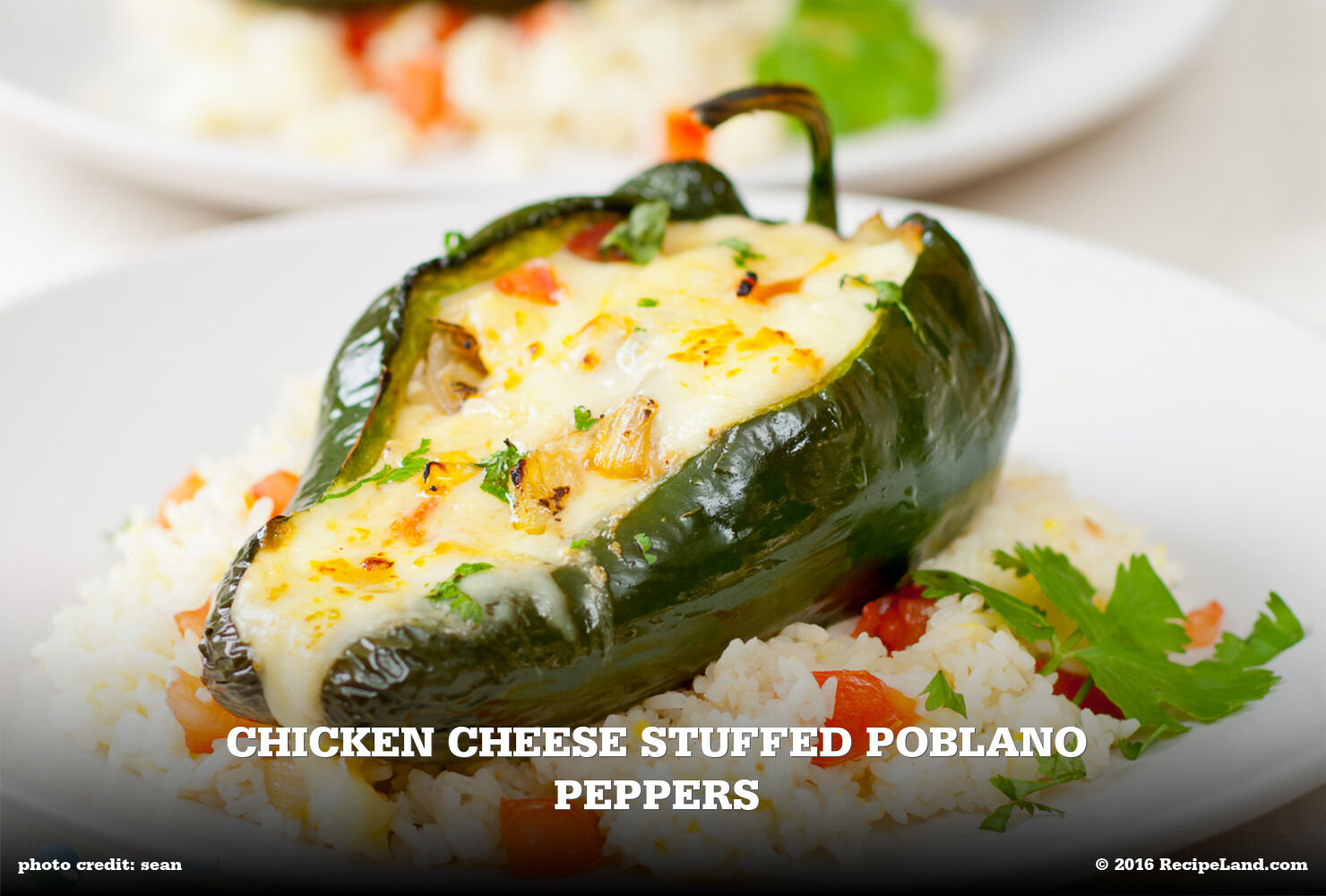 Chicken Cheese Stuffed Poblano Peppers