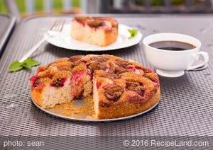 Grandma's Best Plum Cake