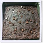 Vegan Flourless Chocolate Chip Zucchini Oat Brownies