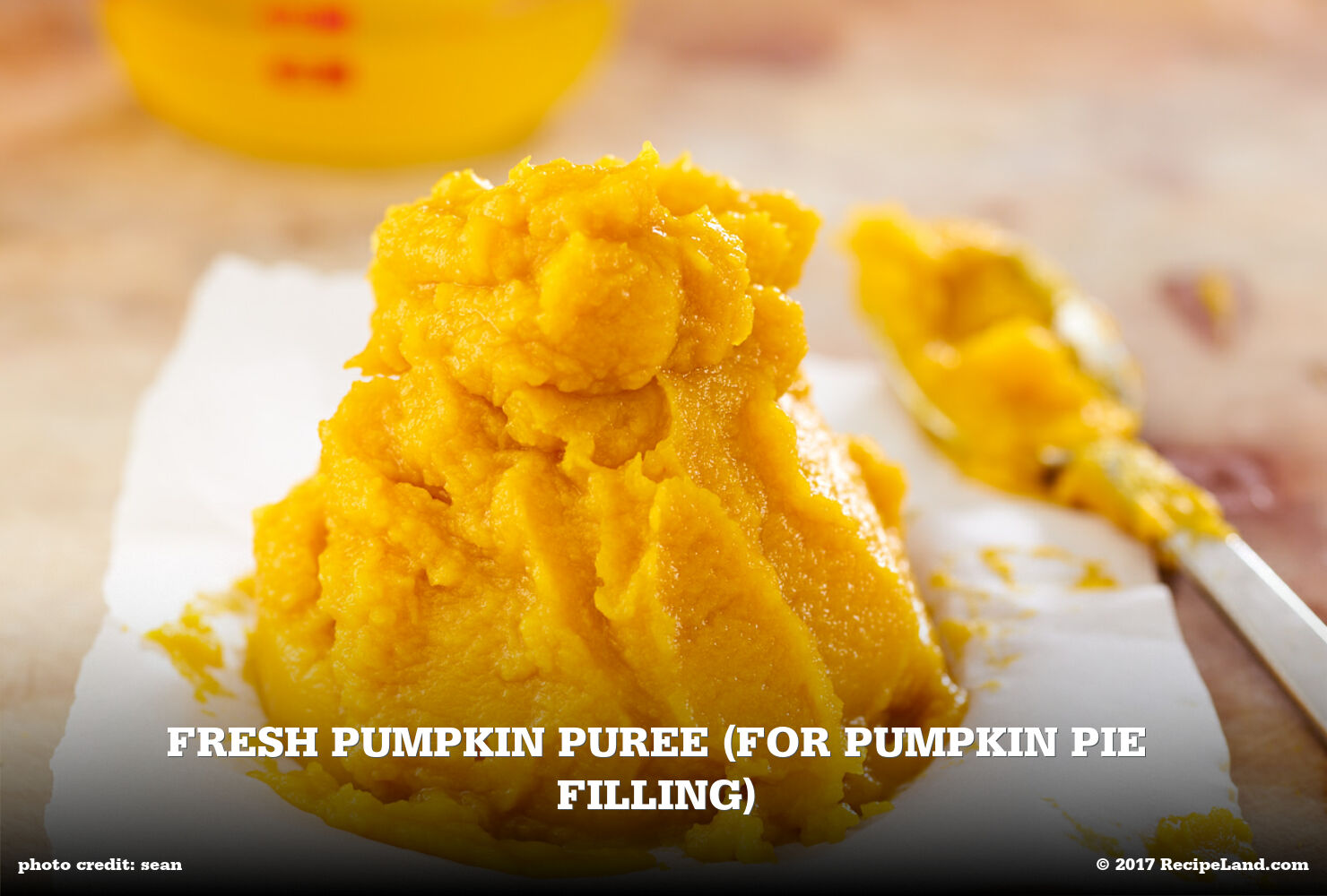 Fresh Pumpkin Puree (for Pumpkin Pie Filling)