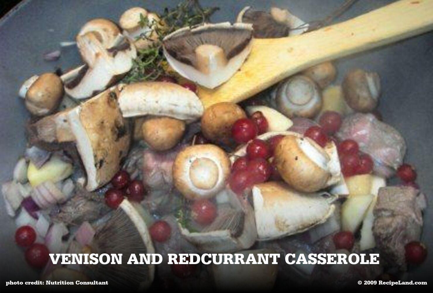 Venison and Redcurrant Casserole