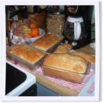 Holiday Polish White Bread