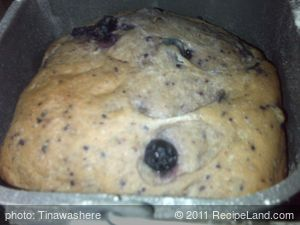 Bread Maker Blueberry Yogurt Cake-bread
