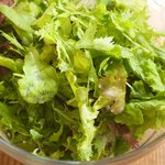 Add the well wash and dried mixed greens into the large bowl with 1/2 of the dressing.