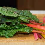 Here we have to show these beautiful and colourful Swiss chard.